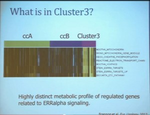13 What is in Cluster 3