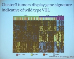 14 Cluster 3 tumor display