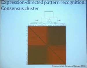 8 Expression-directed pattern recognition Concensus cluster